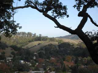 San Anselmno Property for Sale 312 Scenic Avenue